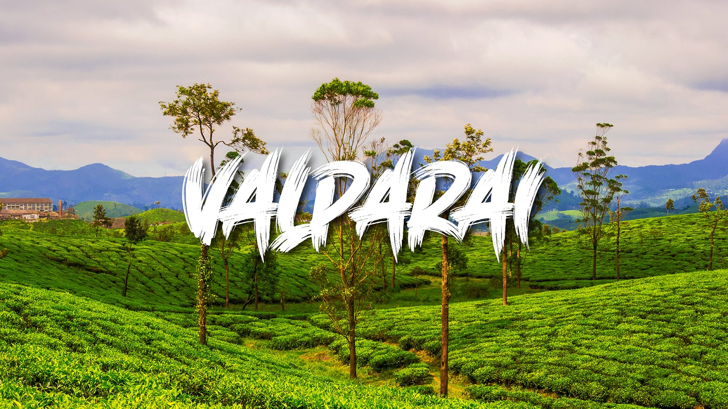 Valparai - A Heavenly Hill station amidst Flora and Fauna