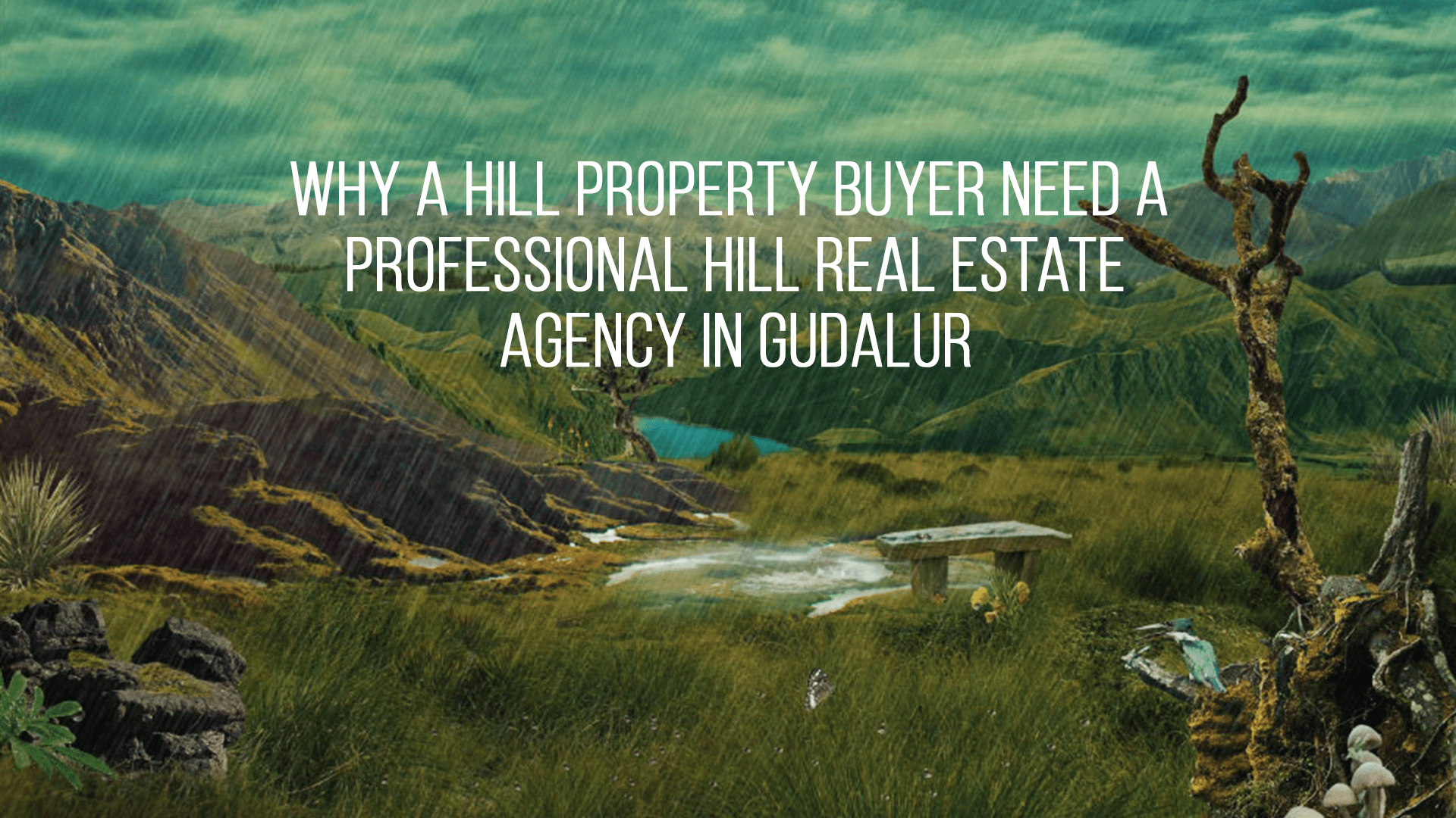 Why a Property Buyer need A  Professional Hill Real Estate Agency Gudalur?