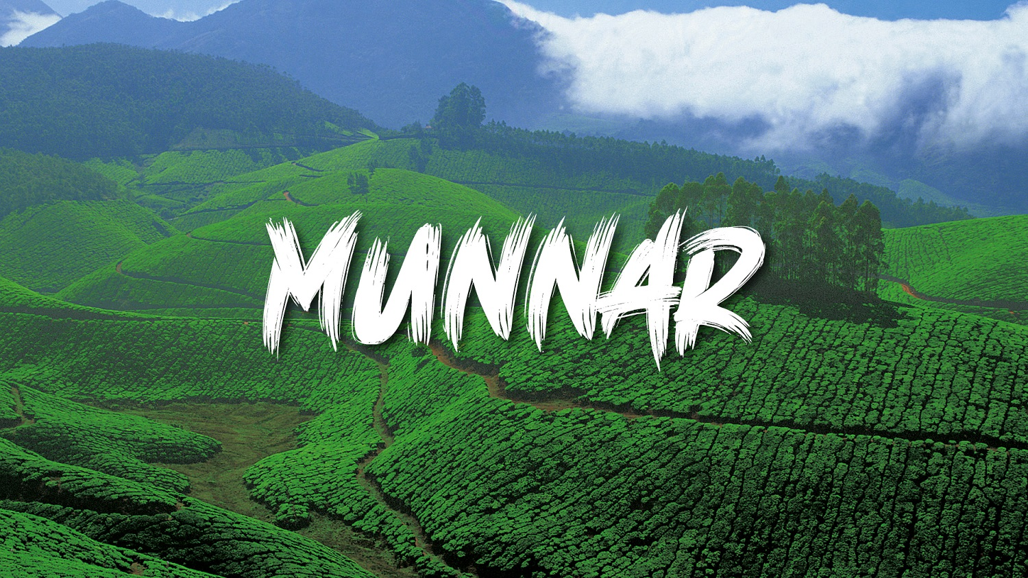 Munnar - A Hills Station amidst Forests and Rivers