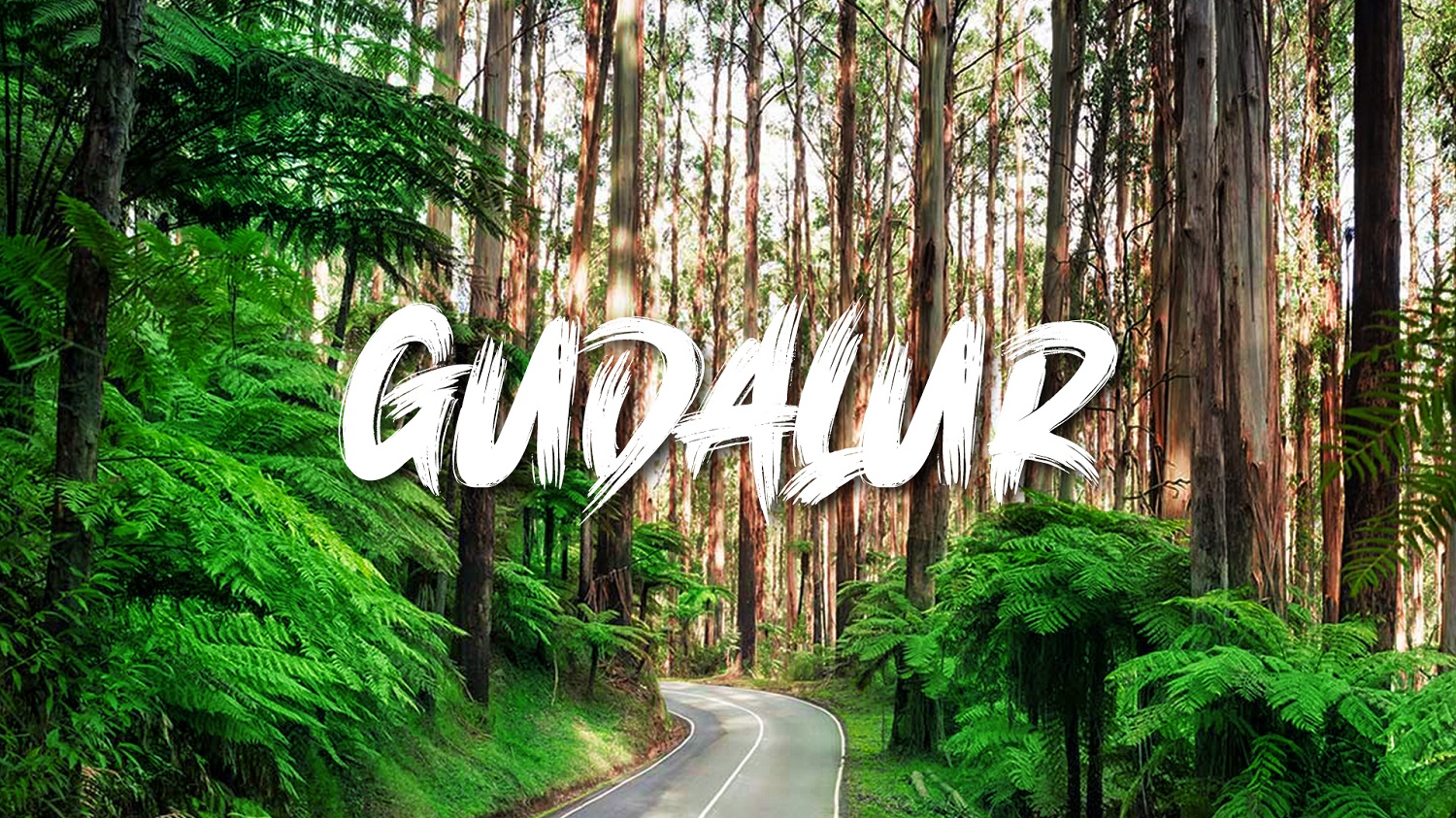 Gudalur-Visit, Invest and Settle in a Satellite Town at Hills!!