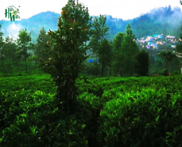 16 cents Residential Plot For Sale in Hubbathalai Coonoor