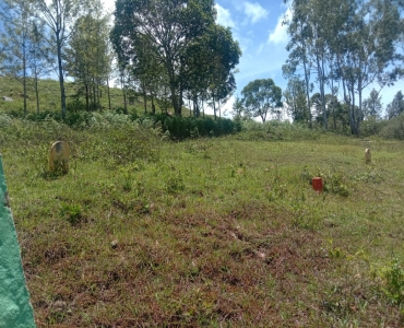 4360 sq.ft. Residential Plot For Sale in Manjakuttai Yercaud