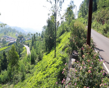 10 cents Residential Plot For Sale in Ketti Palada Ooty