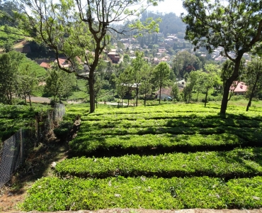4800 sq.ft. Residential Plot For Sale in Coonoor