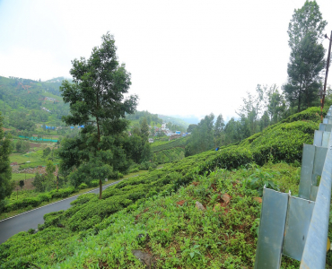 28 cents Residential Plot For Sale in Dhenallai Coonoor