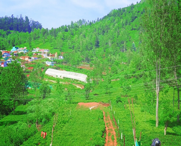 30 cents Residential Plot For Sale in Kethouri Village Ooty