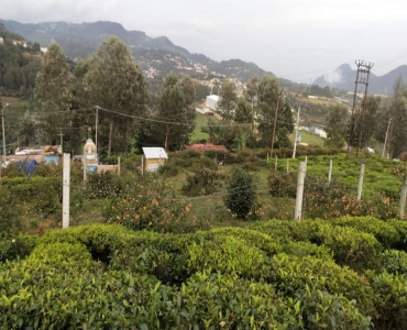 5737 sq.ft. Residential Plot For Sale in Hubathalai Village Coonoor