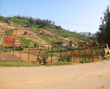 20 cents Residential Plot For Sale in Basavakal Ooty