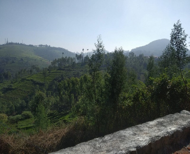 25 cents Residential Plot For Sale in Westbrook Ooty