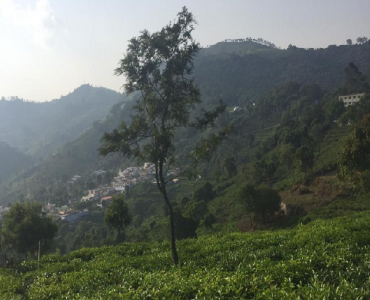 30 cents Residential Plot For Sale in Kotagiri