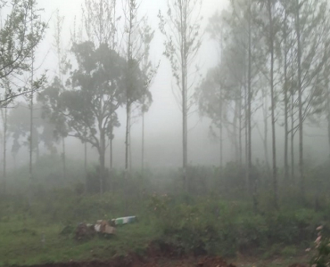 12 cents Residential Plot For Sale in Pattipadi Yercaud