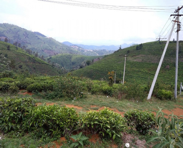 35 cents Residential Plot For Sale in Hubbuthalai Coonoor