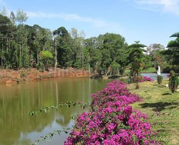 2.01 acres Agriculture Land For Sale in Alathur Nadu Kolli Hills