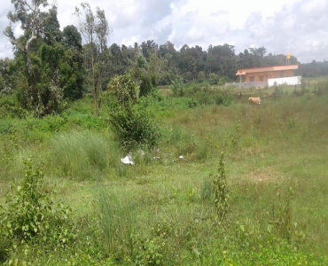 30 cents Residential Plot For Sale in Bittangala, Virajpet Coorg