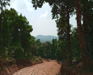 5 acres Agriculture Land For Sale in Katageri Madikeri