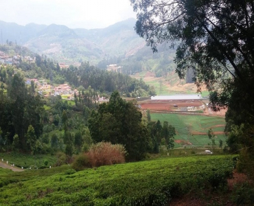 1950 sq.ft. Residential Plot For Sale in Kappachi Ooty