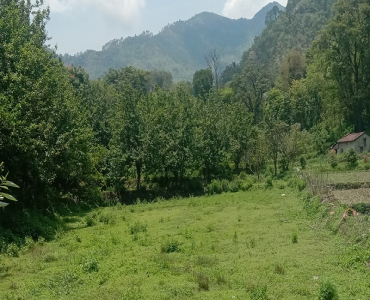43200 sq.ft. Agriculture Land For Sale in Jeolikote Nainital