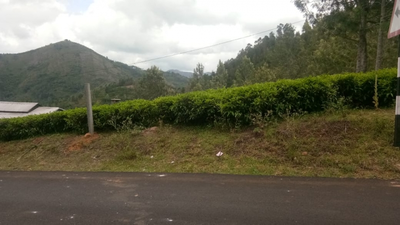 ₹16 Lac | 2180 sq.ft. Residential Plot For Sale in Kotagiri