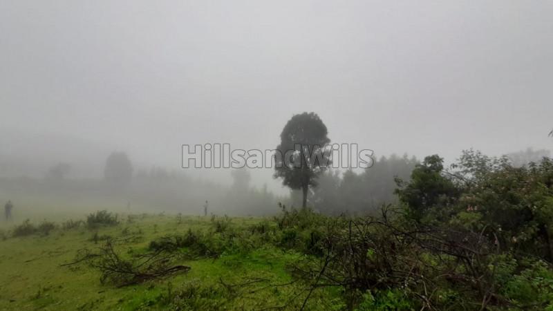 ₹65 Lac|7 acres Agriculture Land For Sale in Kundupatti Kodaikanal