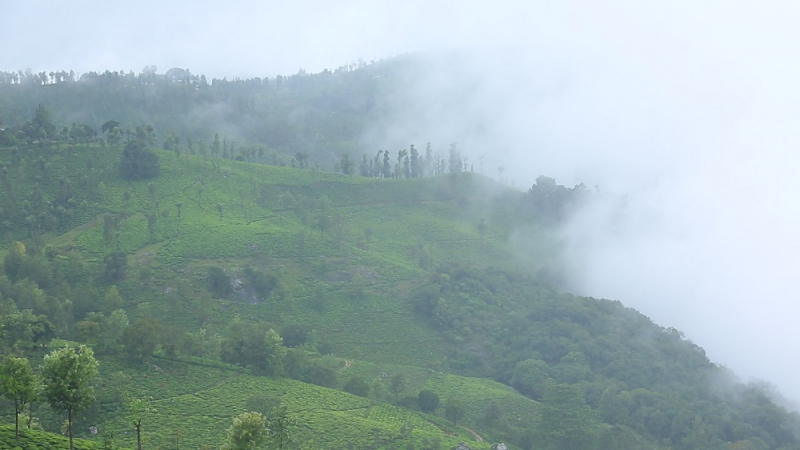 ₹2.22 Cr | 7.4 acres Agriculture Land For Sale in kottakkal Ooty