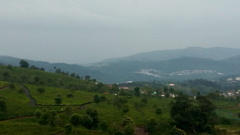 ₹ 50 Lac | 22 cents Agriculture Land For Sale in Kattabettu Kotagiri