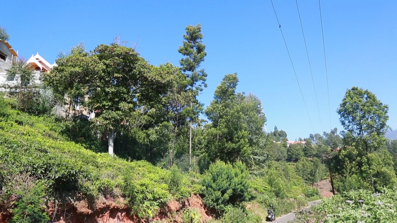 ₹15 Lac|10 cents Residential Plot For Sale in Ketti Palada Ooty