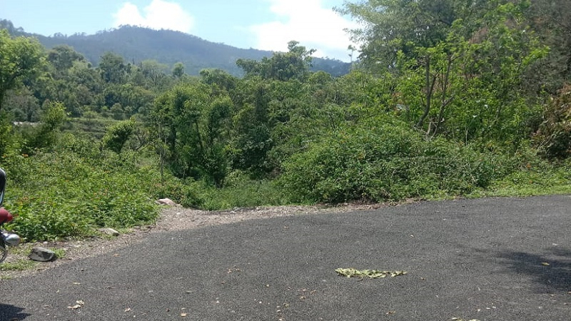 ₹1.60 Cr|43200 sq.ft. Agriculture Land For Sale in Jeolikote Nainital