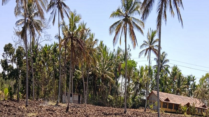 ₹1.60 Cr 4BHK Farm House For Sale in Kirangur near Kushalnagar Coorg