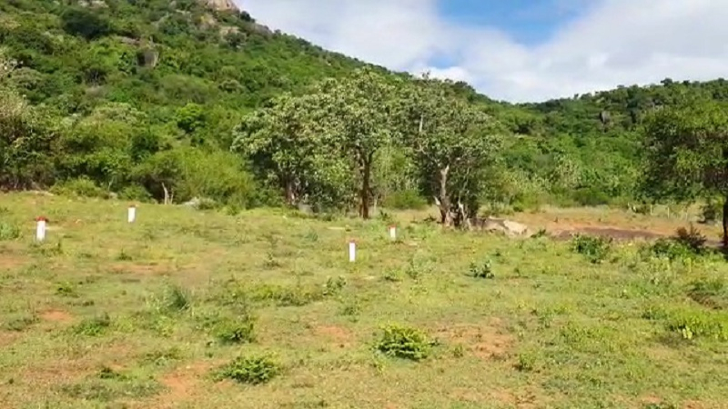 ₹42 Lac 21 cents Residential Plot For Sale in Ayiraperi Courtallam