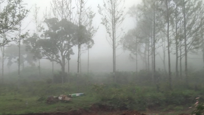 ₹30 Lac|12 cents Residential Plot For Sale in Pattipadi Yercaud