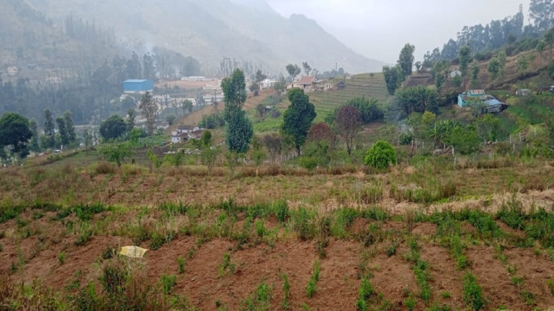 ₹1.02 Cr|38 cents Agriculture Land For Sale in Kodaikanal