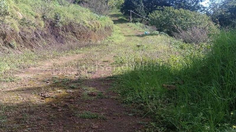 ₹47.50 Lac|9147 sq.ft. Commercial Land  For Sale in Kovilpatty, Near Villpatti Kodaikanal