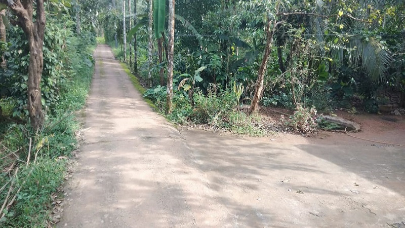 ₹30 Lac | 3BHK Farm House For Sale in Mechana Wayanad