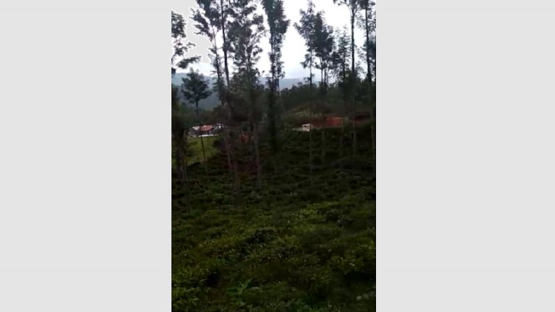 ₹75.25 Lac|43 cents Agriculture Land For Sale in Kanneri Mukku Kaikatti Kotagiri
