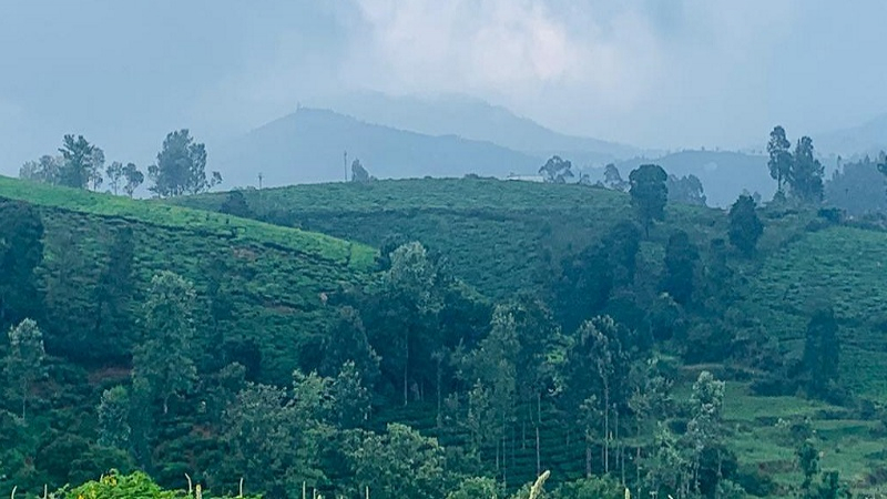 ₹150 Cr|9.6 acres Agriculture Land For Sale in Karadipallam Coonoor