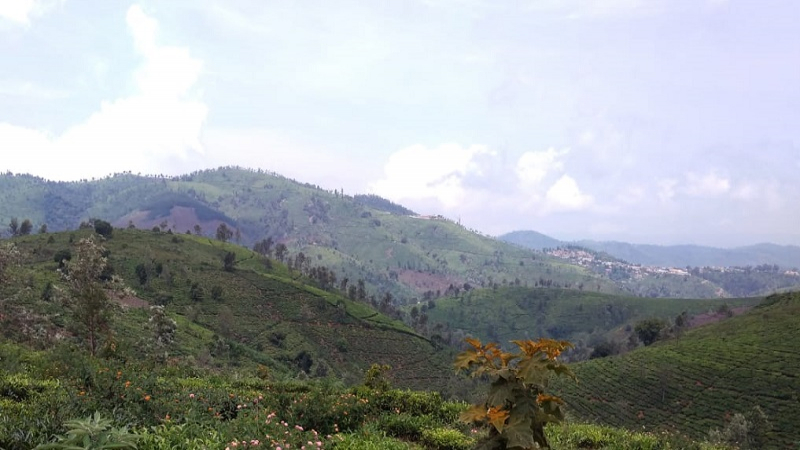 ₹87.50 Lac 35 cents Residential Plot For Sale in Hubbuthalai Coonoor