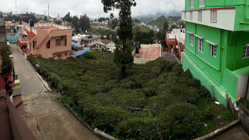 ₹88 Lac|10 cents Residential Plot For Sale in Kotagiri