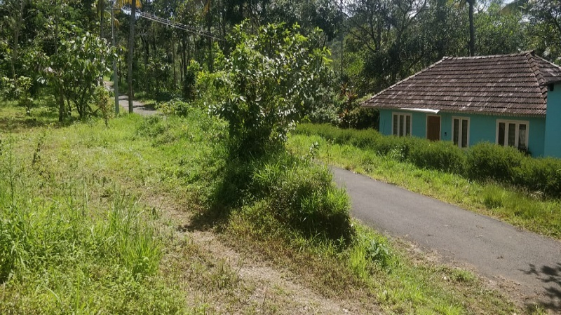 ₹25 Lac | 8.5 cents Residential Plot For Sale in Kunjithanni Munnar