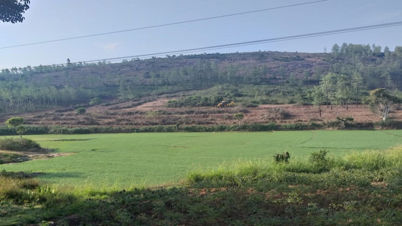 ₹2.50 Cr 6.98 acres Agriculture Land For Sale in Gundur Nadu Kolli Hills