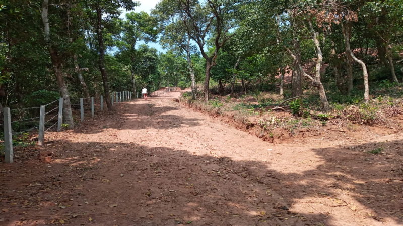 ₹8 Cr|5 acres Agriculture Land For Sale in Katageri Madikeri